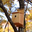 Birds house — Stock Photo #5139603
