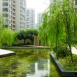 Central garden in a new residential district — Stock Photo