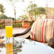 Glass of orange juice and ice cream on table in a garden. — Stock Photo