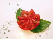 Tomato flower — Stock Photo