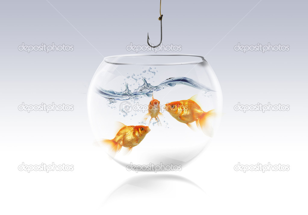 Goldfish in a aquarium with fishing hook — Stock Photo #4860125