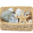 Royalty-Free Stock Photo: Cockleshells in a basket from straw