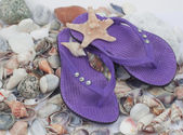 Beach slippers lie on cockleshells — Zdjęcie stockowe