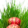 Royalty-Free Stock Photo: Easter eggs on a green grass