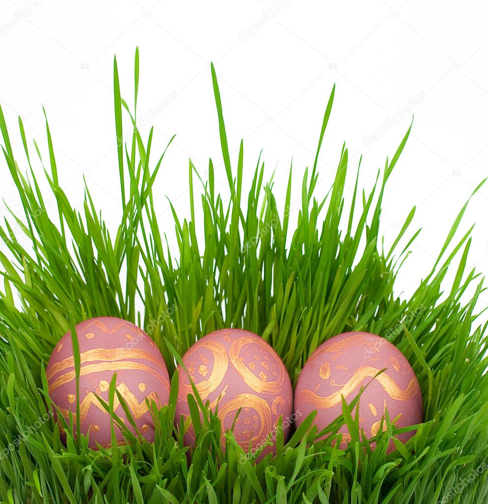 Easter eggs on a green grass — Stock Photo #5146184