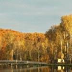 Autumn landscape at dawn — Stock Photo