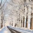 Kış lane şafak — Stok fotoğraf