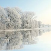 Frostigen winter bäume in der dämmerung — Stockfoto
