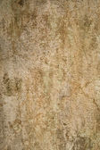 Aged and cracked plaster wall — Stock Photo