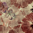 Red and pink grungy flower background — Stock Photo