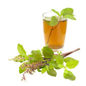 Holy Basil Tulsi Tea Ayurvedic Remedy — Stock Photo