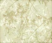 Fleurs enchevêtrés et fond de branches — Photo