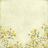 Tangled Blossom Border Background — Stock Photo