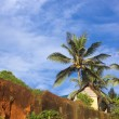 Tropical Hut on a Clifftop — Stock Photo