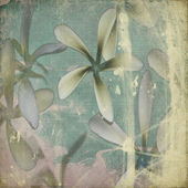 Grunge pastel flower background — Stock Photo