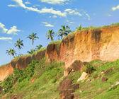 Tropical Cliff in Varkala on Kerala Coastline — Stock Photo