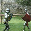 Stock Photo: Duel between two knights