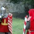 Duel of knight's — Stock Photo #4218824