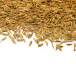 Caraway seeds — Stock Photo #4100164