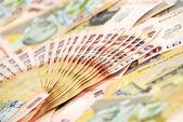 Detalj närbild av rumänska banconotes — Stockfoto