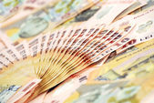 Primer plano de detalle de banconotes rumano — Foto de Stock