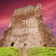 Tower ruin — Stock Photo #4114674
