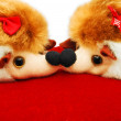 Kissing porcupines dolls — Stock Photo