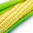 Royalty-Free Stock Photo: Corn isolated