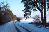 Winter scene — Stockfoto