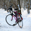 Stock Photo: Bike standing in the woods