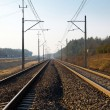 Foto Stock: Railroad track