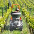 Framer is just spreading dung with tractor in vineyard — Stock Photo #4409042