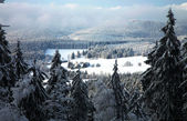 Landscape near Pasterka village in Poland — Стоковое фото
