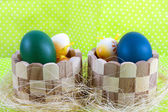 Colour decoration with easter egg — Stock Photo