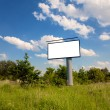 Blank Bilboard in a green nature — Stock Photo