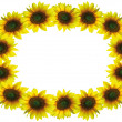 Royalty-Free Stock Photo: Sunflower frame with space for your text