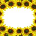 Beautiful sunflower frame — Stock Photo #4107159