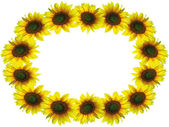 Sunflower frame with space for your text — Stock Photo