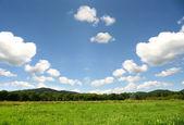 Příroda krajina pozadí — Stock fotografie