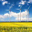 Wind generators with rapeseed fields. — Stock Photo #4273947