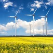 Wind generators with rapeseed fields. — Stock Photo