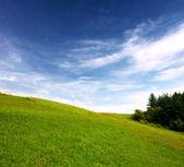 场和天空 — 图库照片