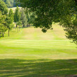 Beautiful golf park — Stock Photo
