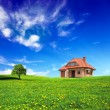 New house on grassland — Stock Photo #4579026