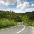 Stockfoto: Travel road