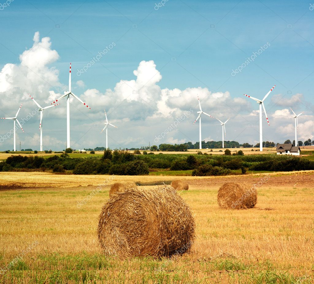 Wind turbines and straw bails   Stock Photo #4738339