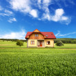 New rural house — Stock Photo #4817563