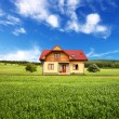 Stock Photo: New rural house