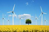 Power generating windmills — Stock Photo