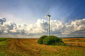 Wind turbines in an open field on cloudy day — Stock Photo